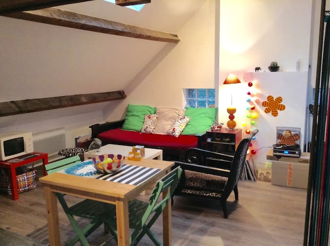 Joli studio chez l'habitant - Liévin - Квартира