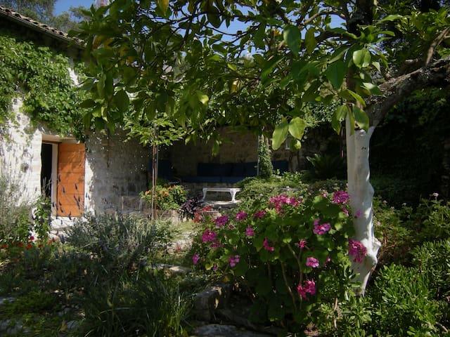 Cinzias House - Paxos - Hus