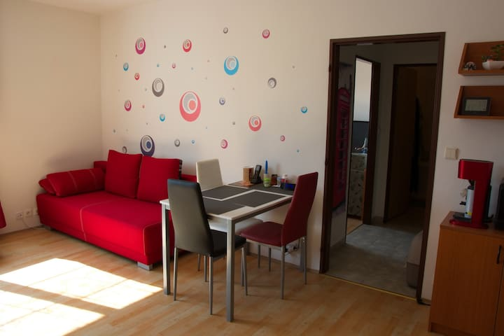 Shared room 20 min to the Prague city center - Prag - Wohnung