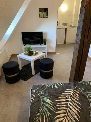 Studio à Ribeauvillé