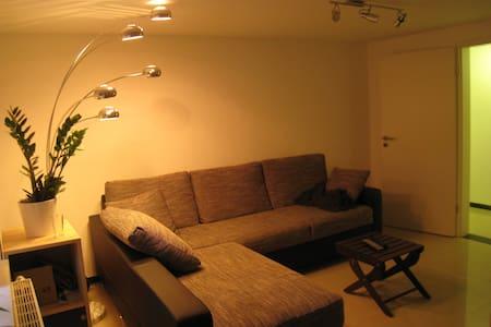 Schöne Südstadt-Wohnung mit Garten - Ravensburg - Appartement
