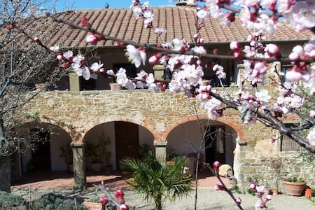 Lovely house in Tuscany - Civitella In Val di Chiana
