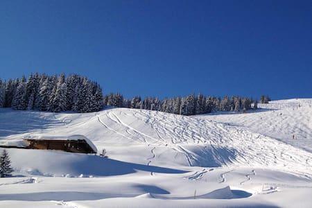 Alpine deluxe chalet-Wallegg Lodge - Chalet