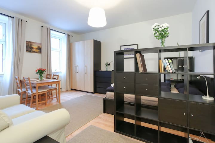 Nicely and cosy renovated studio Apartment