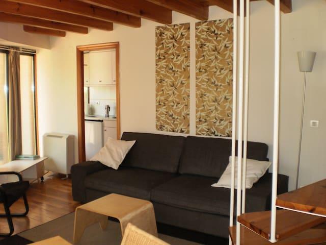 Apartamento céntrico en Burgos. - 布爾戈斯(Burgos) - 公寓