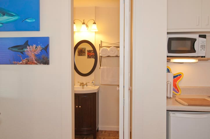 View into the bathroom from the kitchenette