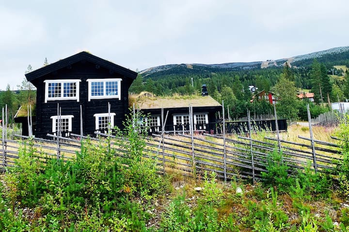 Brand new timber lodge house i Björnrike, Vemdalen