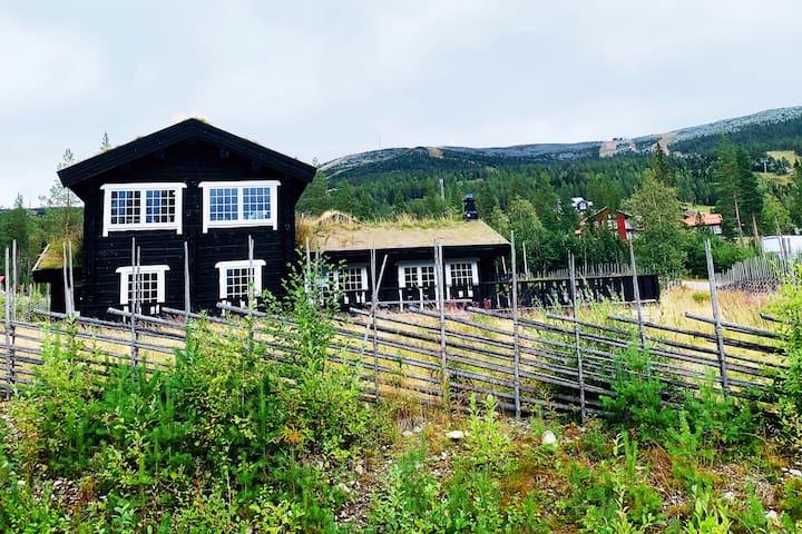 Neugezimmertes Holzhaus in Björnrike in Vemdalen