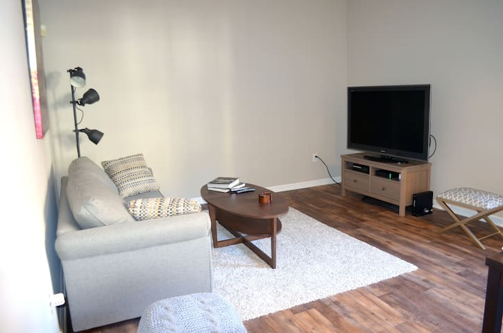 Modern one bedroom in Downtown New Haven