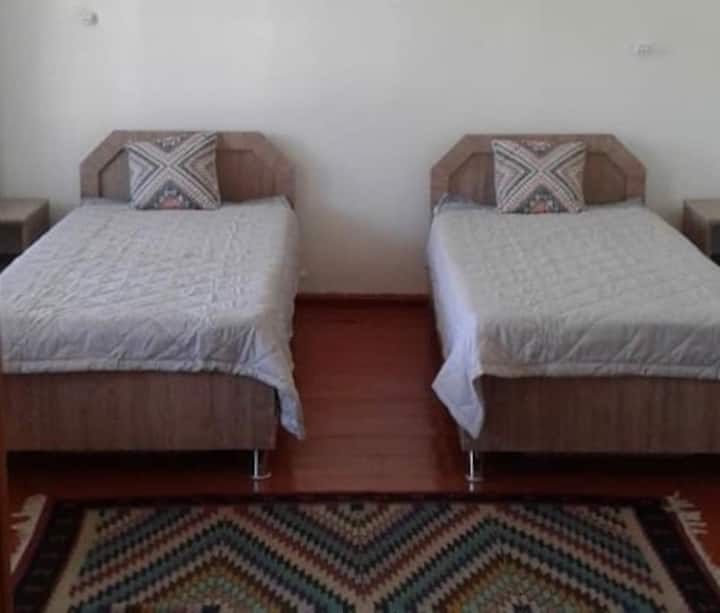 Double/ Twin Room in Bright Family Guesthouse