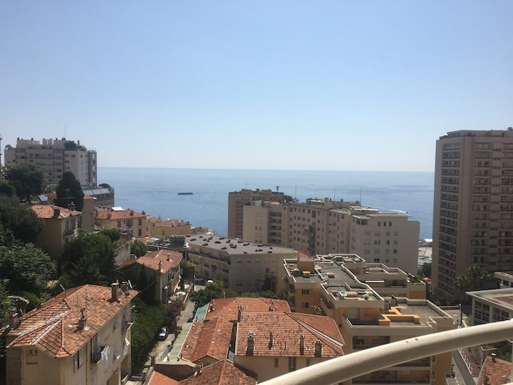 Wonderful view - Monaco 5 min
