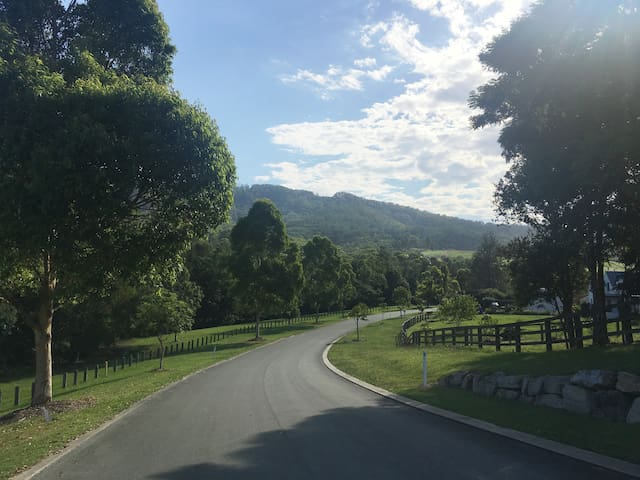 Willow Pocket - Gold Coast Hinterland