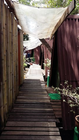 Camp Villa Monkey Tops - Beaufort - Bed & Breakfast
