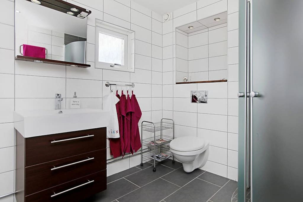 Newly renovated bathroom with shower on first floor. Smaller bathroom with bathtub/shower downstairs