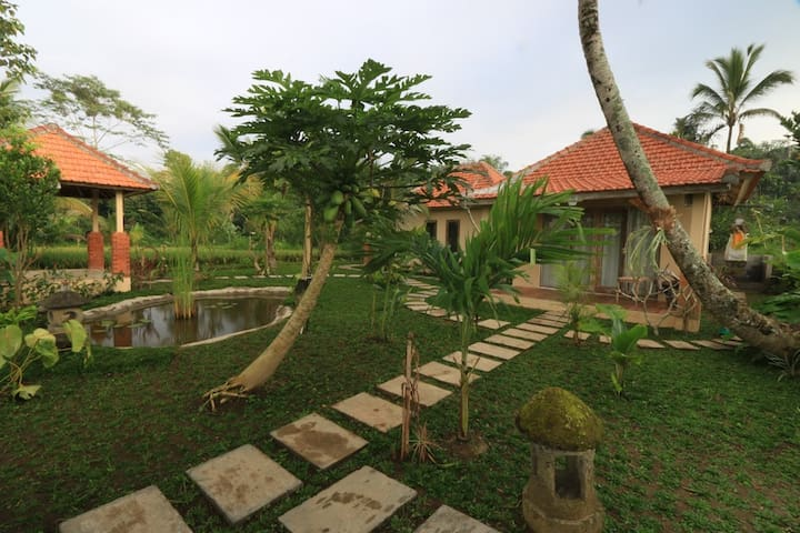 Beautiful Rice filed Guest  House Village Stay I