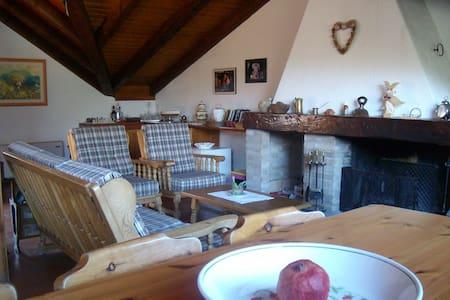 Graziosa casa nel cuore delle alpi