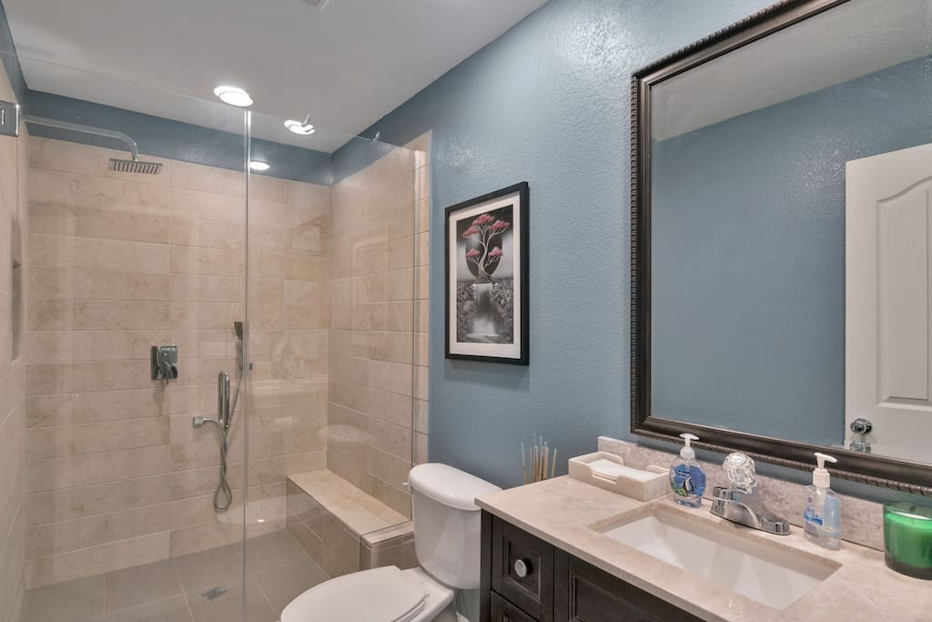 A guest bathroom designed for royalty.  You might return just for the shower.