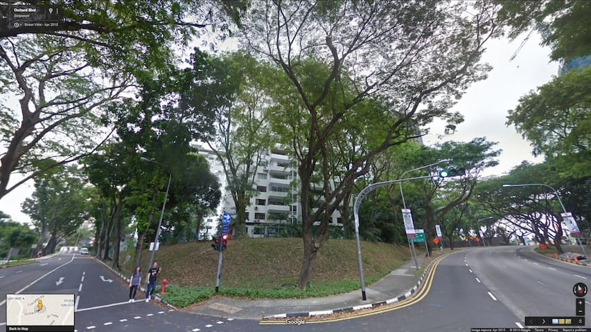 Orchard Road Area Room for Rent