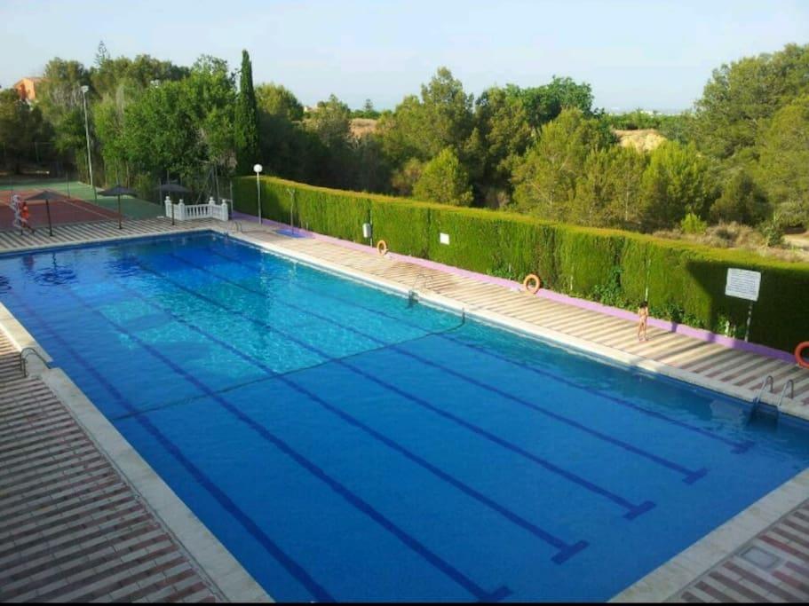 Villa con piscina privada y wi fi villas for rent in for Piscina benifaio
