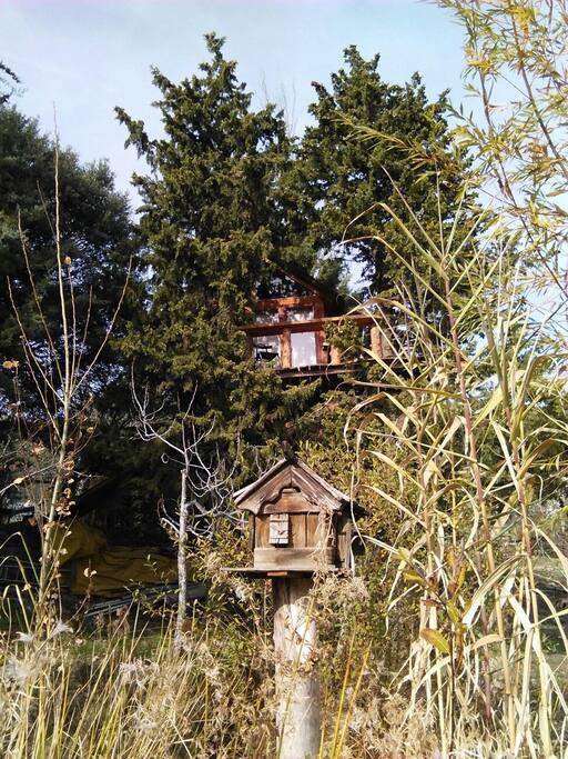 Cabaña en el arbol situada a 5 metros de altura