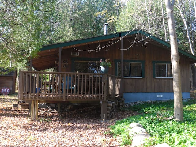 Georgian Bay cedar cabin on wooded lot