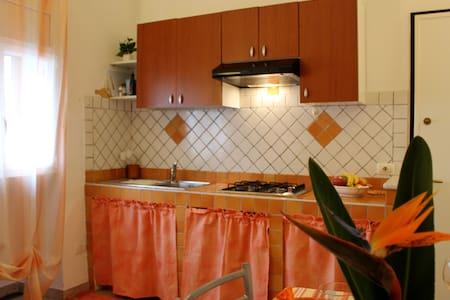 ILA0201 HOUSE BUSSANA  - Bussana - Pis