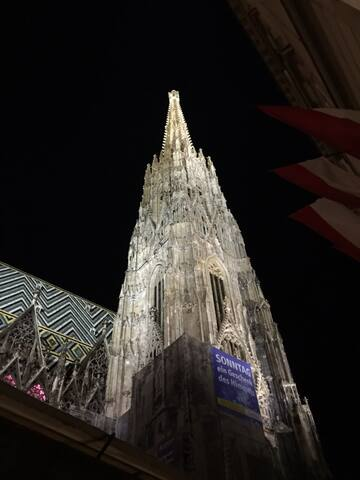 St.Stephen's Cathedral (Stephansdom)