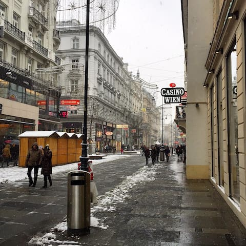 As you exit the flat, if you turn left into the shopping street Kärtner Straße (pictured) you'll get to Vienna State Opera.