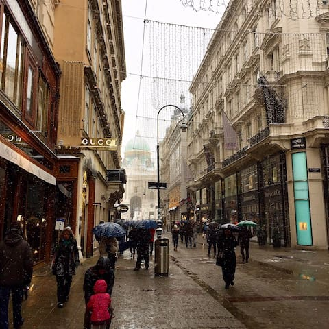 After Graben you will reach Kohlmarkt, the shopping street with exclusive brands. In the background you can see Hofburg - the Imperial Residence