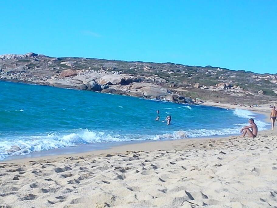 plage d'algajola