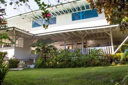 Rainforest & Beach Casa Punta Banco