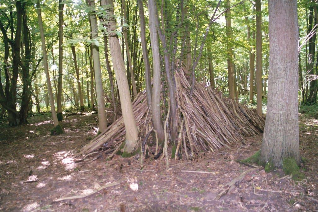 Imaginative hut built by young visitors