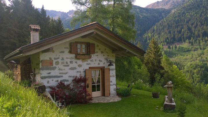Baita alpina in Val Borzago, comune di Pelugo.