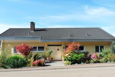 SCHÖNE FEWO NÄHE EUROPA PARK - Seelbach - 아파트