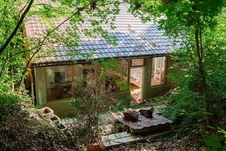 Enchanting cottage in private forest w/private hot tub, terrace, & free parking!