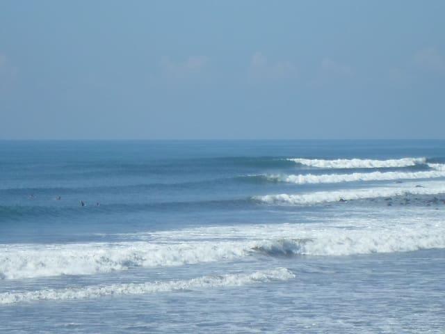 * Absolute Ocean Front- Studio Loft