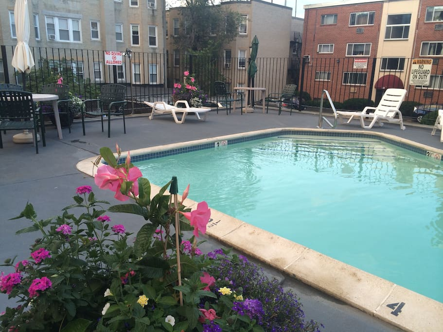 backyard pool (!), private to residents and their guests, open in the summer