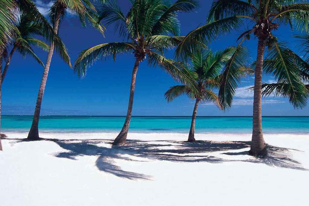 Nearby Playa Blanca Beach - Punta Cana, just 7 minutes away