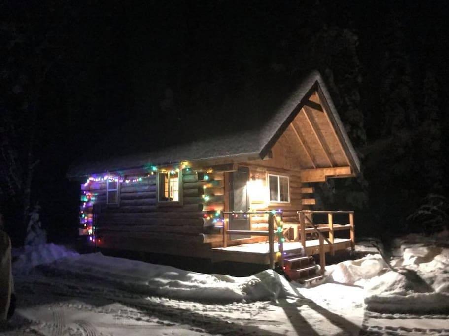 Christmas lights and snow!