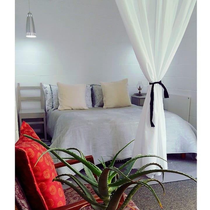 Agapanthus garden apartment