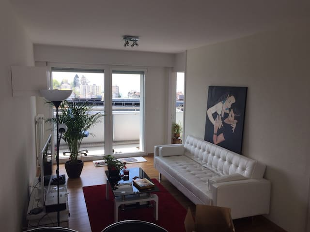 10mn by foot from town & lake view - Lausanne - Apartemen