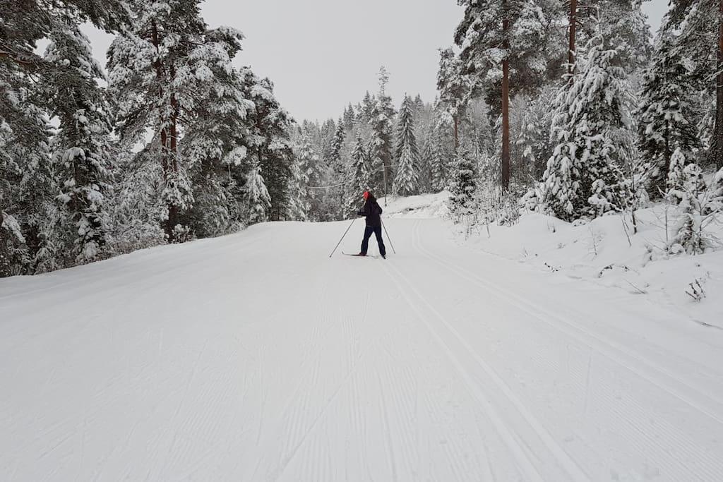 Crosscountry skiing slopes 5 min walk