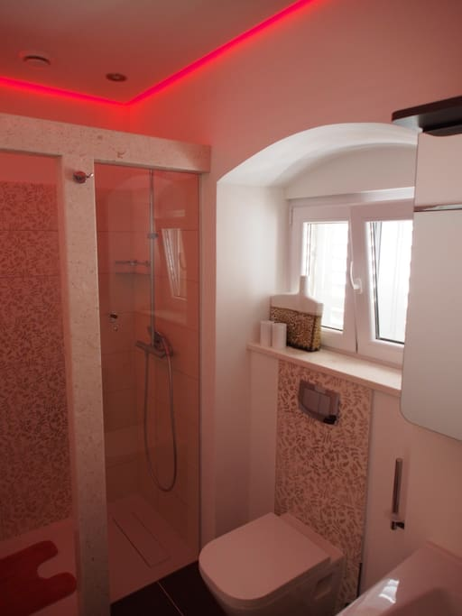 Newly renovated bathroom including a sink, toilet and shower with regular and rain shower option. Highlighted by changable indirect light from the ceiling. Also equipped with an AC.