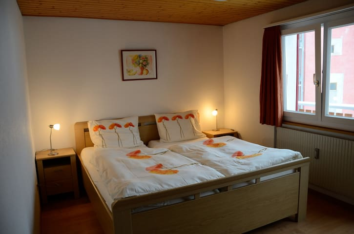 Tulpenhaus-6p, lovely appartment - Fiesch - Appartement