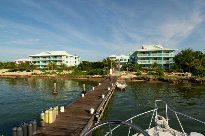 Compass Point Dive Resort - 2 Bed Beachfront Condo