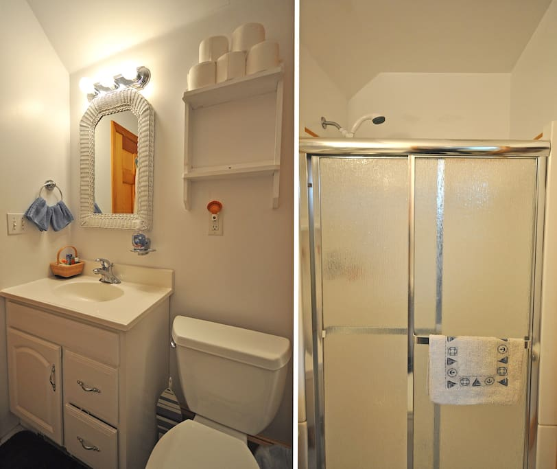 Clean, modern bathroom with shower stall.