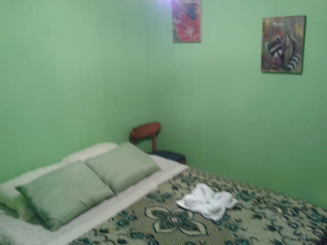Green Room Guest House - El Castillo - Ev