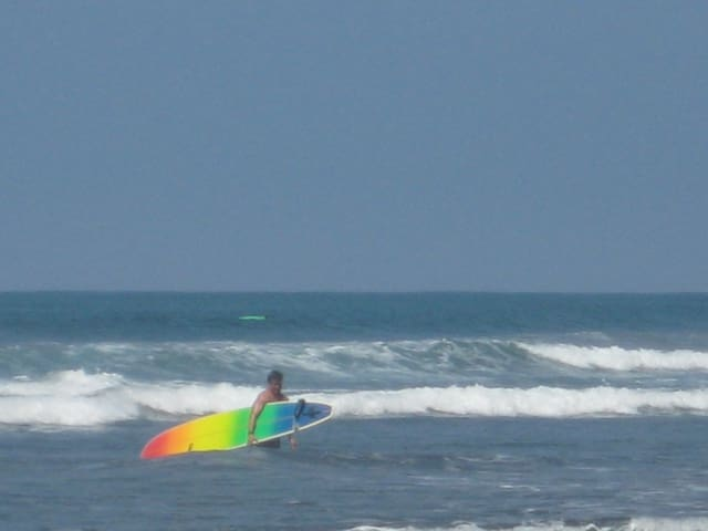 Great Surfing!
