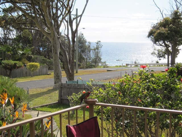 Ocean views and walk to the beach - Mystery Bay - House
