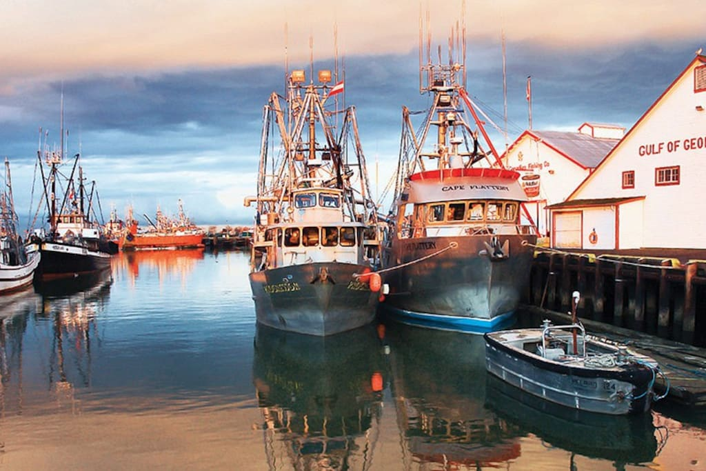 Steveston Harbour